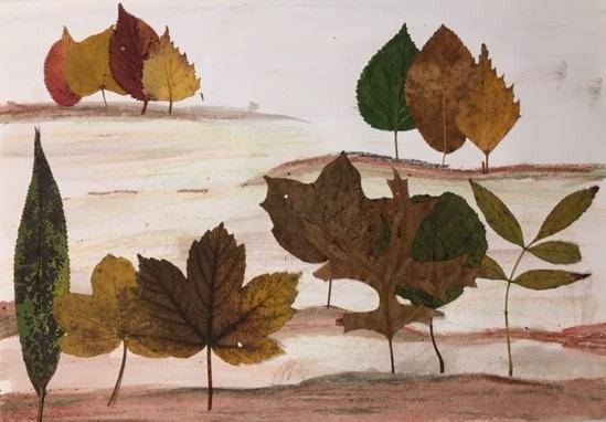 bomen van herfstbladeren